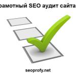 site-audit-seo